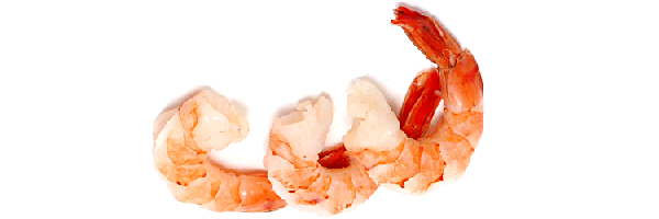 shrimps for higher testosterone levels