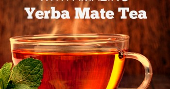 yerba mate tea for weight loss